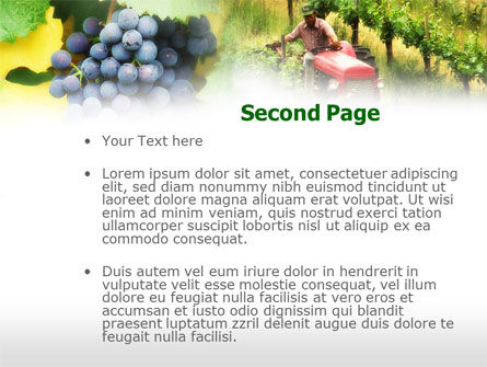 Grape Field PowerPoint Template Slide 2