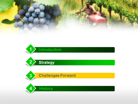 Grape Field PowerPoint Template Slide 3