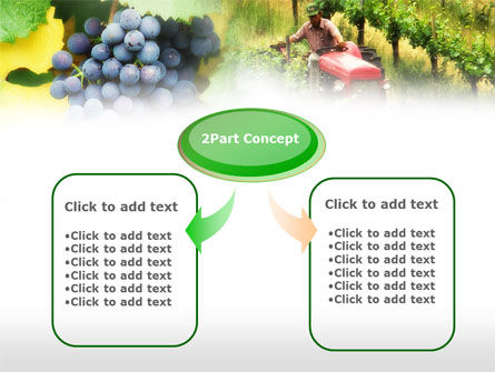 Grape Field PowerPoint Template Slide 4