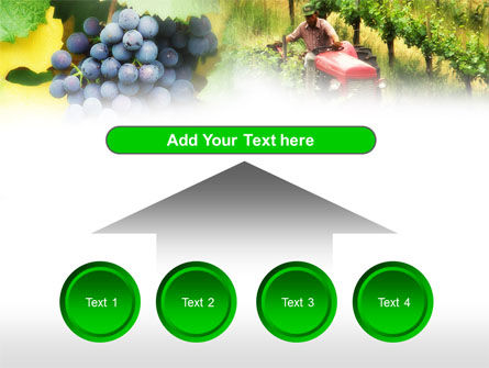 Grape Field PowerPoint Template Slide 8