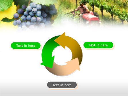 Grape Field PowerPoint Template Slide 9