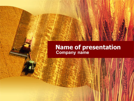 Harvesting Of Wheat PowerPoint Template, 00587, Agriculture — PoweredTemplate.com