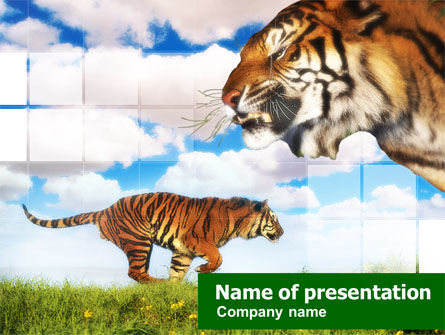 Animals and Pets: Tiger PowerPoint Template #00669