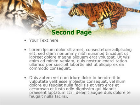 Tiger PowerPoint Template, Slide 2, 00669, Animals and Pets — PoweredTemplate.com