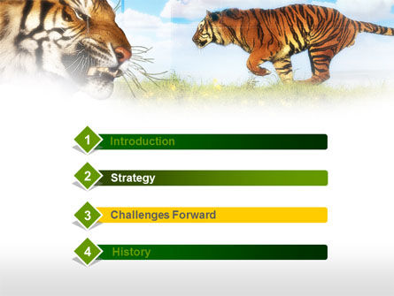 Tiger PowerPoint Template, Slide 3, 00669, Animals and Pets — PoweredTemplate.com