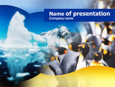 Animals and Pets: Antarctic Continent PowerPoint Template #00673