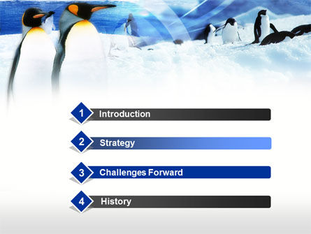 Penguin Couple PowerPoint Template, Slide 3, 00675, Animals and Pets — PoweredTemplate.com