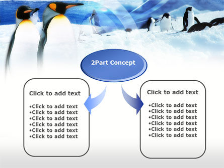 Penguin Couple PowerPoint Template, Slide 4, 00675, Animals and Pets — PoweredTemplate.com