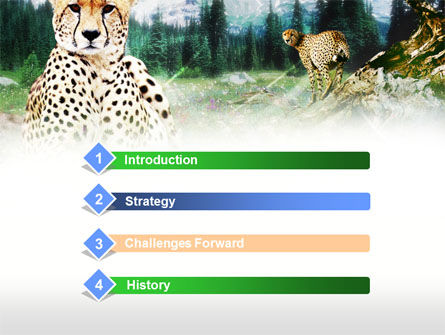Gepard Free PowerPoint Template, Slide 3, 00676, Animals and Pets — PoweredTemplate.com