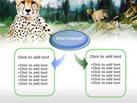 Gepard Free PowerPoint Template, Slide 4, 00676, Animals and Pets — PoweredTemplate.com