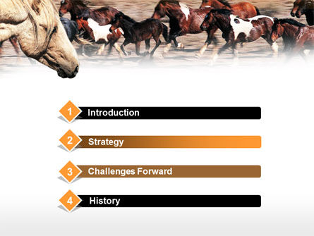 Wild Horses PowerPoint Template, Slide 3, 00690, Animals and Pets — PoweredTemplate.com
