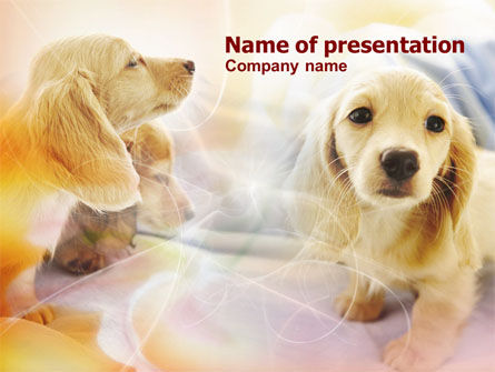 Animals and Pets: Puppies PowerPoint Template #00775