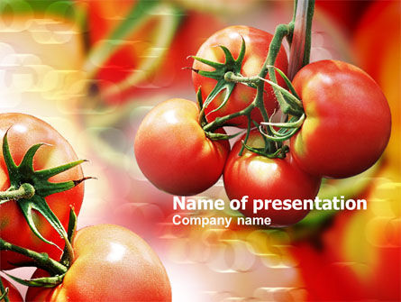 Tomato Farming PowerPoint Template, 00786, Food & Beverage — PoweredTemplate.com