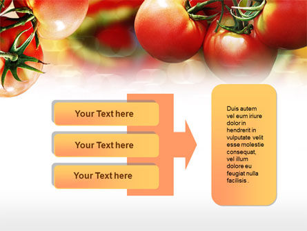 Tomato Farming PowerPoint Template Slide 11