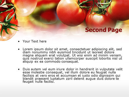 Tomato Farming PowerPoint Template, Slide 2, 00786, Food & Beverage — PoweredTemplate.com