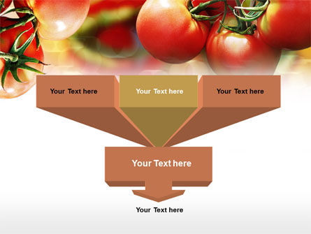 Tomato Farming PowerPoint Template, Slide 3, 00786, Food & Beverage — PoweredTemplate.com