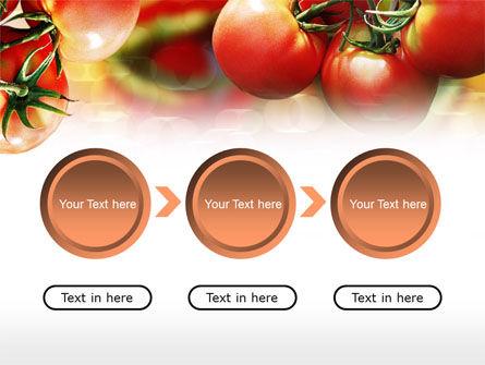 Tomato Farming PowerPoint Template Slide 5