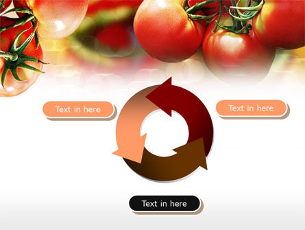 Tomato Farming PowerPoint Template Slide 9