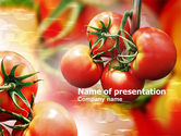 Food & Beverage: Tomaat Landbouw PowerPoint Template #00786