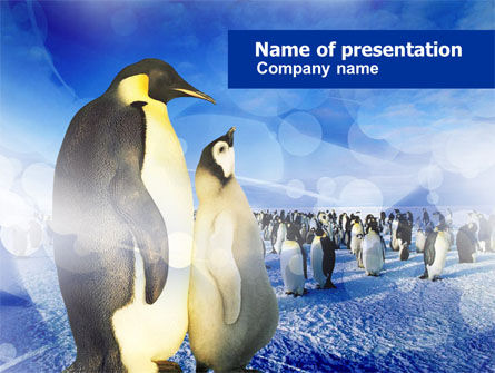 Animals and Pets: Penguins PowerPoint Template #00794