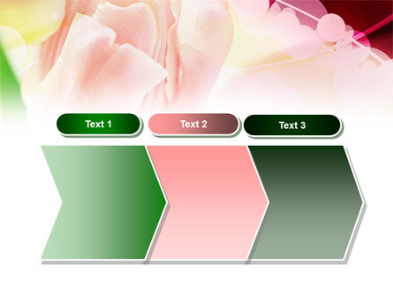 Light Pink Tulip PowerPoint Template Slide 16