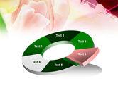 Light Pink Tulip PowerPoint Template#19