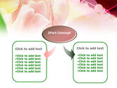 Light Pink Tulip PowerPoint Template#4