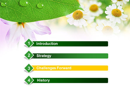 Camomiles PowerPoint Template Slide 3
