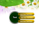 Camomiles PowerPoint Template#12