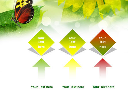 Butterfly On The Leaf PowerPoint Template Slide 5