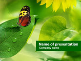 Nature & Environment: Butterfly On The Leaf PowerPoint Template #00824