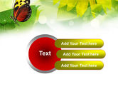 Butterfly On The Leaf PowerPoint Template#12