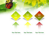 Butterfly On The Leaf PowerPoint Template#5