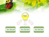 Butterfly On The Leaf PowerPoint Template#8