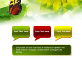 Butterfly On The Leaf PowerPoint Template#9