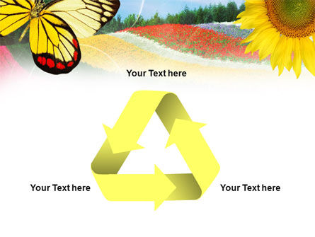 Butterfly PowerPoint Template Slide 10