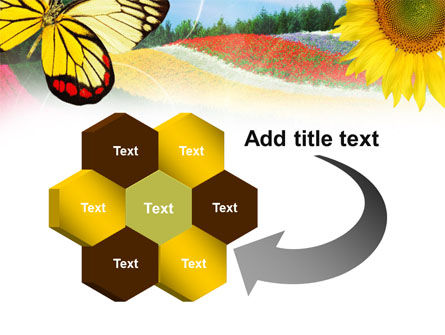 Butterfly PowerPoint Template Slide 11