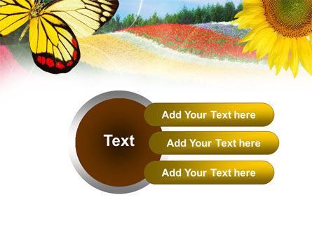 Butterfly PowerPoint Template Slide 12