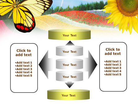 Butterfly PowerPoint Template Slide 13