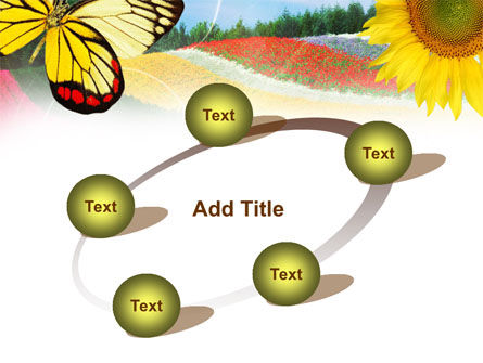 Butterfly PowerPoint Template Slide 14
