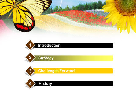 Butterfly PowerPoint Template Slide 3