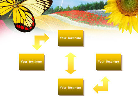 Butterfly PowerPoint Template Slide 4