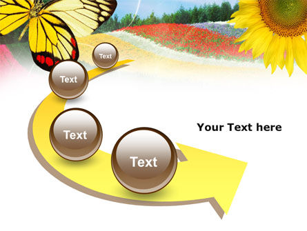 Butterfly PowerPoint Template Slide 6