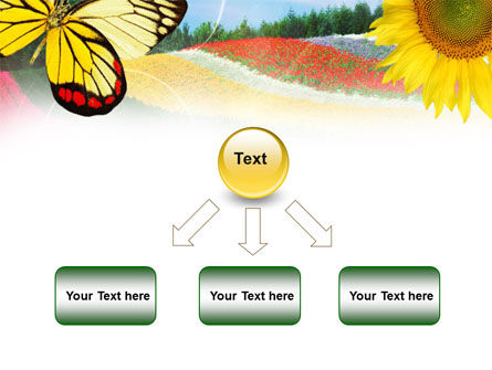 Butterfly PowerPoint Template Slide 8