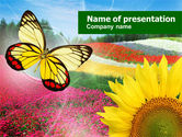 Nature & Environment: Butterfly PowerPoint Template #00836
