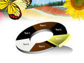 Butterfly PowerPoint Template#19