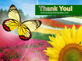 Butterfly PowerPoint Template#20