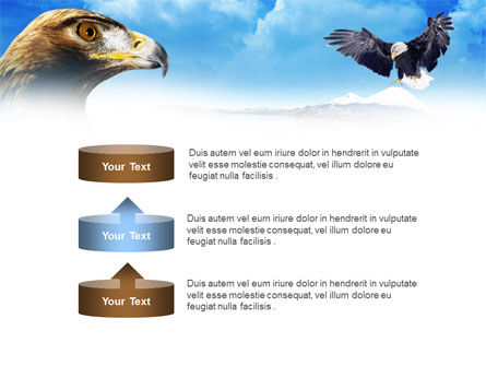 Eagles PowerPoint Template Slide 10