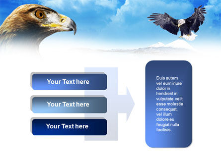 Eagles PowerPoint Template Slide 11