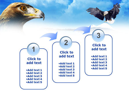 Eagles PowerPoint Template Slide 14